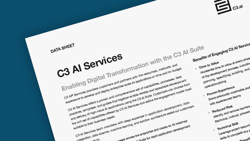 C3 AI Services
